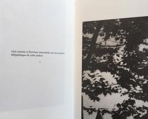 http://anamata.pt/files/gimgs/th-51_livro4.jpg